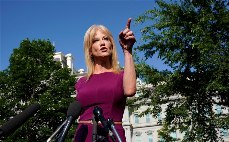 Reporter Pays The Price After Trying To Pressure Kellyanne Conway About Her Husband's Behavior, 'Let Me Tell You…'