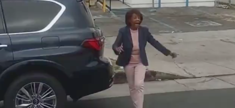 Watch: Rep. Maxine Waters Tries To Intervene During Police Traffic Stop