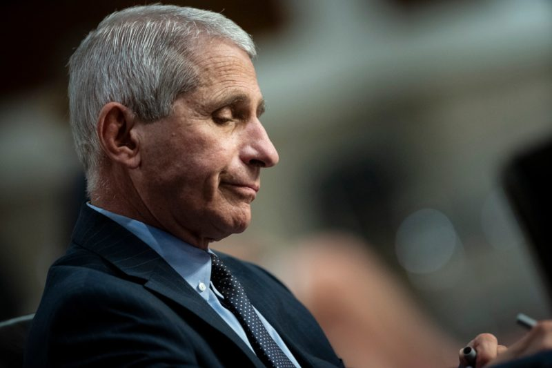Dr, Fauci's World Is Falling Apart Even His Family Is Fed Up With Him