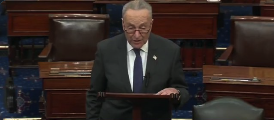 Unconstitutional Coup: Schumer Demands Biden's Cabinet Confirmed BEFORE He's Inaugurated (VIDEO)