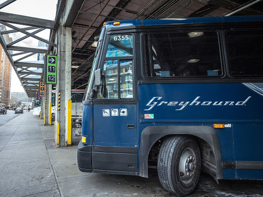 Greyhound Bus Fights Biden's Immigration Policy, Tells Biden To Go Pound Sand, 'Our Top Priority Is The Safety Of Our…