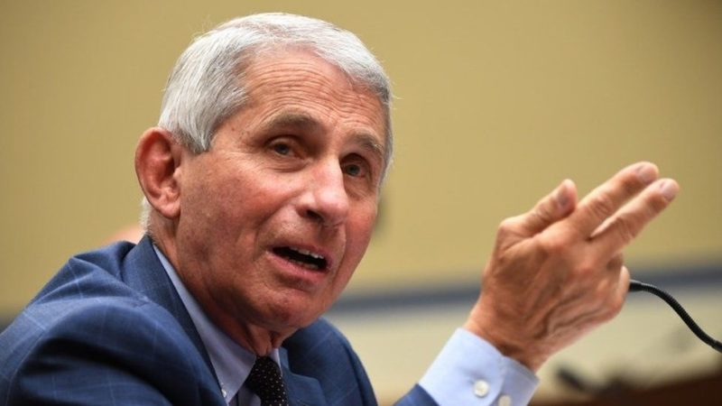 Senate GOP Use Border Order To Make Fauci Put His Money Where His Mouth Is
